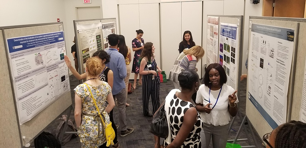 Fellows discussing their research at Summer Poster Day