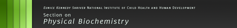 Eunice Kennedy Shriver National Institute of Child Health and Human Development - Section on Physical Biochemistry