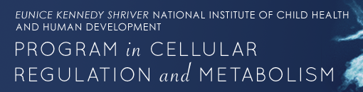 Eunice Kennedy Shriver National Institute of Child Health and Human Development - Program in Cellular Regulation and Metabolism