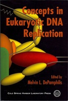 Concepts in Eukaryotic DNA Replication
