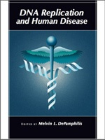 DNA Replication and Human Disease