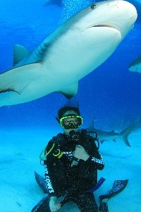 Jana Kainerstorfer swimming with sharks